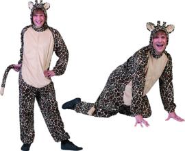 Giraffe heer mt. 52/54