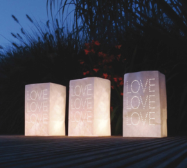 Lichtzakjes Love 5st.