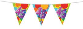 Vlaggenlijn 45 jaar 10m