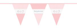 Vlaggenlijn babyshower roze 10m.