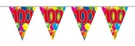 Vlaggenlijn 100 jaar 10m