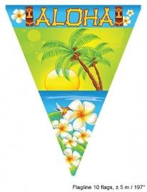 Vlaggenlijn Aloha 5m.