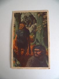 's Lands Glorie verzamelkaarten Serie 1 no 1 reeks 1 (Art.19-1216)