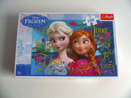 Frozen puzzel (Art.19-1465)