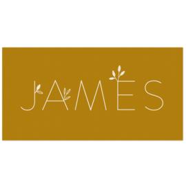 GEBOORTEKAARTJE STRAK BOTANISCH JONGEN 'JAMES'
