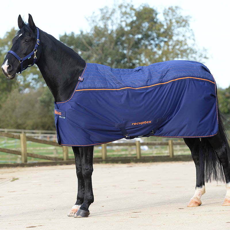 Recuptex Therapy Rug