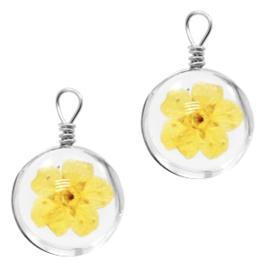 Bedel gedroogde bloempje Yellow