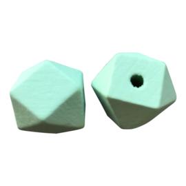 Houten Hexagon Facet kraal 20 mm Mintgroen