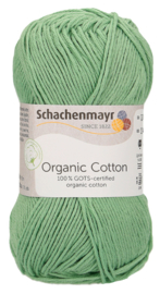 SMC Organic Cotton 00072 Sea Green