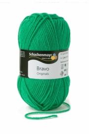 Bravo SMC 8349 Grass