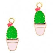 Bedel Cactus