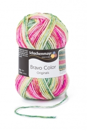 Bravo Color SMC 2123 Wassermelone color