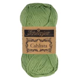Scheepjes Cahlista 212 Sage Green