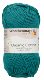 SMC Organic Cotton 00065 Teal