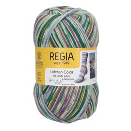 Regia 4ply design line A&C Lofoten Color 3884 Leknes color