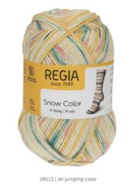 Regia 8ply snow color 8113
