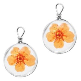 Bedel gedroogde bloempje Orange
