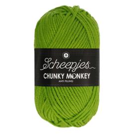 Chunky Monkey Fern 2016