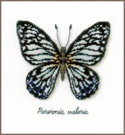 Telpakket kit Blauwe Vlinder