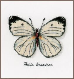 Telpakket kit Witte Vlinder