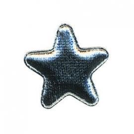 Ster Zilver 4 x 4 cm