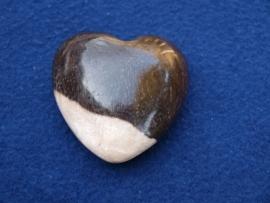 Versteend hout, hart HH20