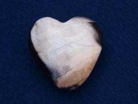 Versteend hout, hart HH14