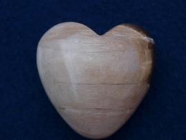 Versteend hout, hart HH24