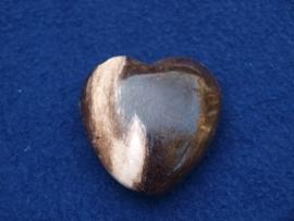 Versteend hout, hart HH28