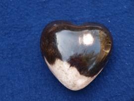 Versteend hout, hart HH30