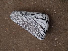 Steen/stone 004NS120628