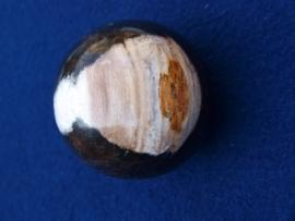 Versteend hout, bol 7 cm. VHB26