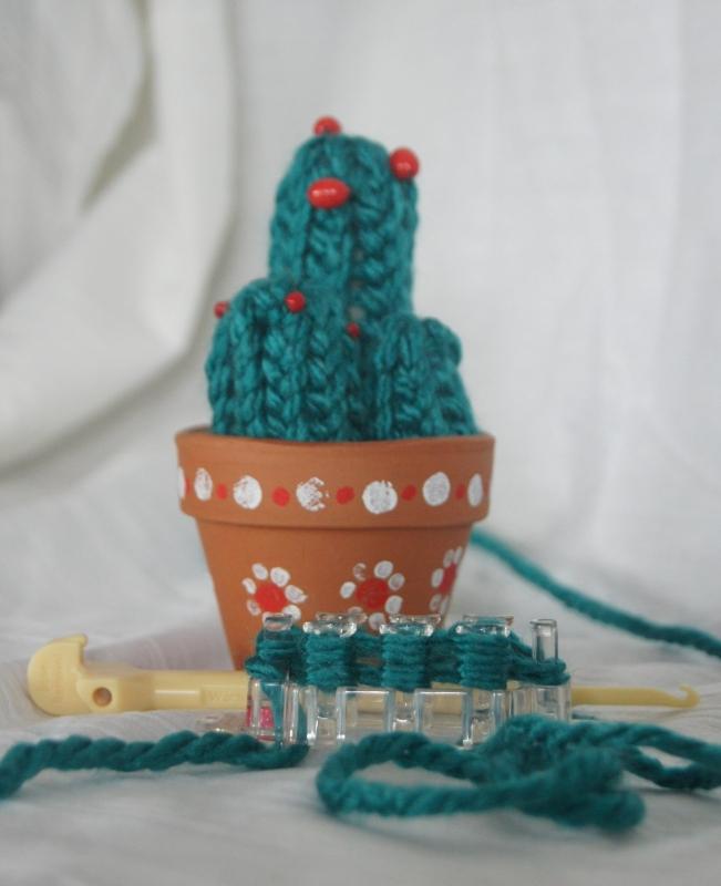 Cactus in een potje