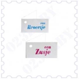 Minikaartje dubbel roze/blauw met tekst