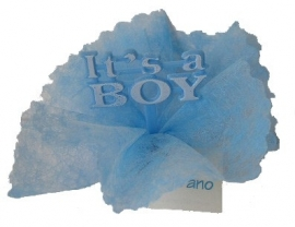 Geboortebedankjes it is a boy / girl wit,roze,blauw