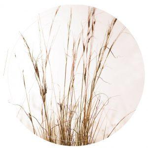 Muurcirkel Grass - 30 cm