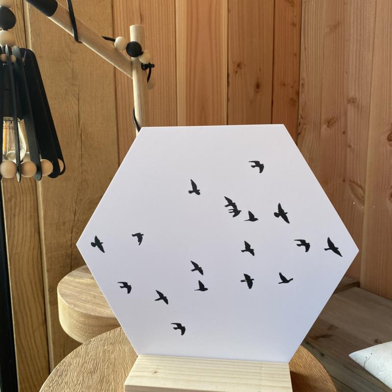 Muurcirkel Hexagon Birds