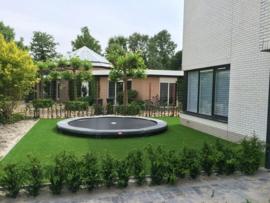 Kunstgras Biesbosch 30