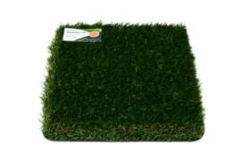 AGN Grass Wembley 36
