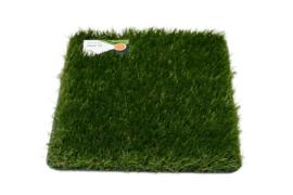 AGN Grass Carpet 33