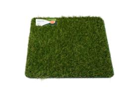 AGN Grass Perfection 20