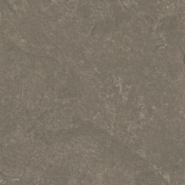 Ceramaxx Canyon Coal 60x60x3