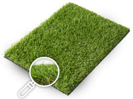 Gras van de Buren Verona+ non-directional