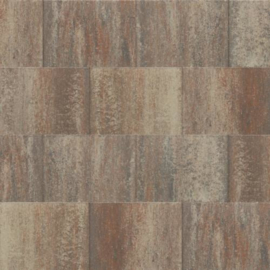 60Plus 20x30x6 Violetto naturel