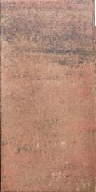 Tremico 30x60x6 oud bont