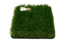 AGN Grass New Slide 52