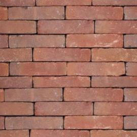 Oud Maastricht straatbaksteen 20x5x8,5 cm