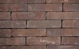 Oud Amsterdam straatbaksteen 20x5x8,5 cm