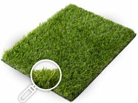 Gras van de Buren Modena+ non-directional