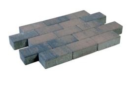 Tremico dikformaat brons